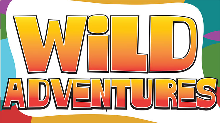 Youth Center Wild Adventures