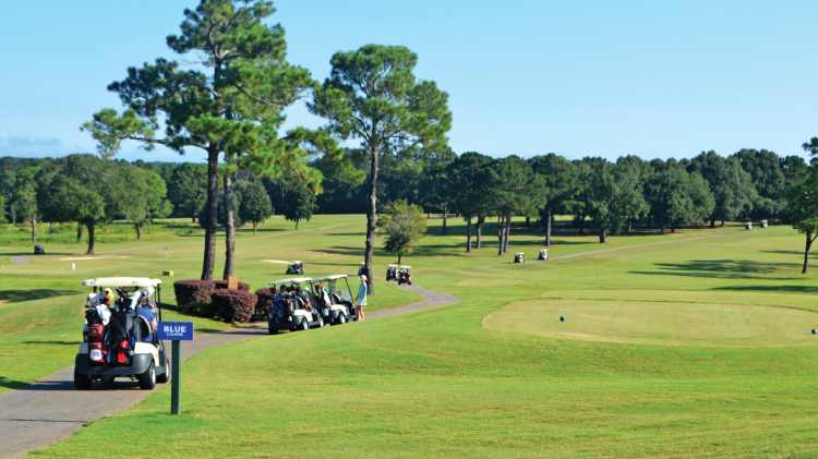 Fifth Annual Veterans Day Golf Challenge